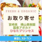 Fresh & Organic国産アボカド