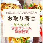 Fresh & Organic食べちょく