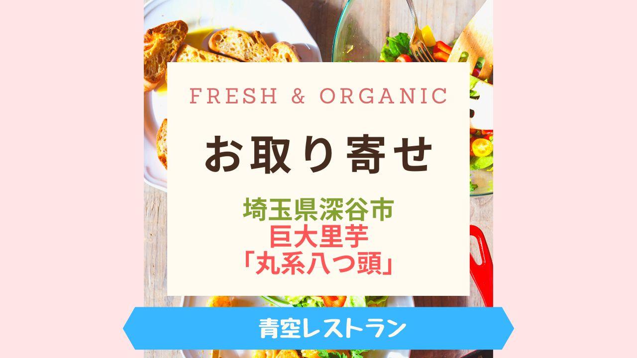 Fresh & Organic巨大里芋